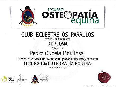 osteopatia en caballos galicia