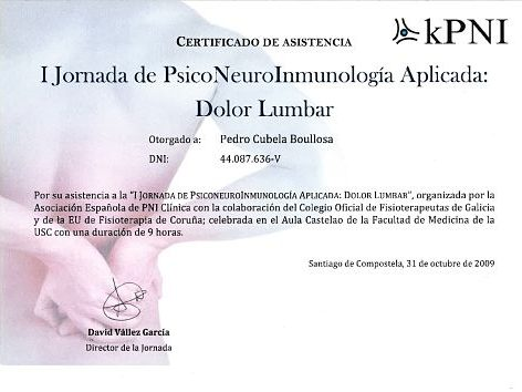 curso de PNI fisioterapia galicia
