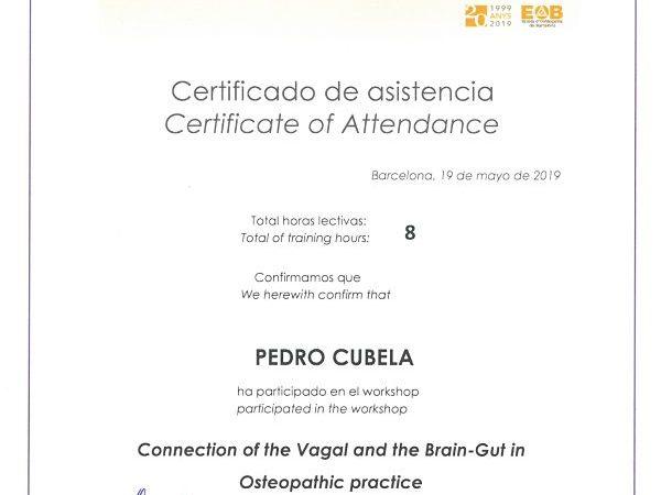 curso de osteopatia barcelona